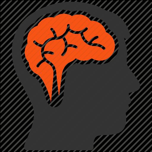 Brain Memory Png Transparent Brain Memory Images