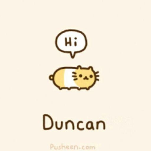 Duncan Wiki Pusheen Amino Pt Br Amino