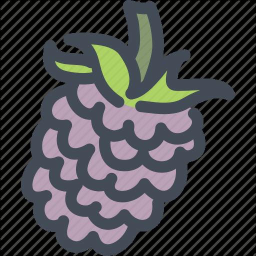 Berries, Food, Fruit, Health, Nutrition, Raspberry, Raspberry Icon