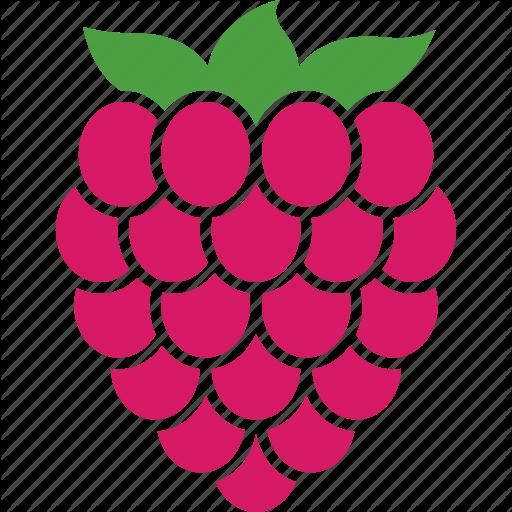 Berry, Food, Fruit, Organic, Raspberries, Raspberry, Rubus Icon