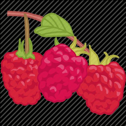 Berrys, Flavor, Fruit, Raspberries, Raspberry Icon