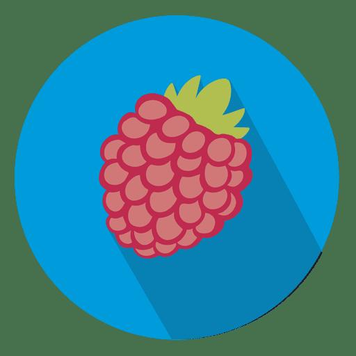 Raspberry Fruit Circle Icon