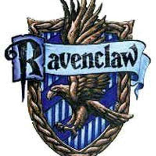 Erin The Ravenclaw Harry Potter Amino