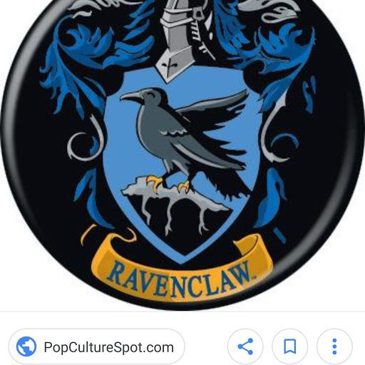 Ravenclaw Harry Potter Amino