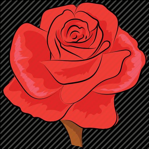 Blossom, Floral, Flower, Red, Red Rose, Rose, Rose Flower Icon