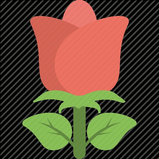 Blossom, Flower, Gardening, Red Rose, Rose Icon