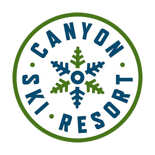 Canyonski Circle Rgb Icon