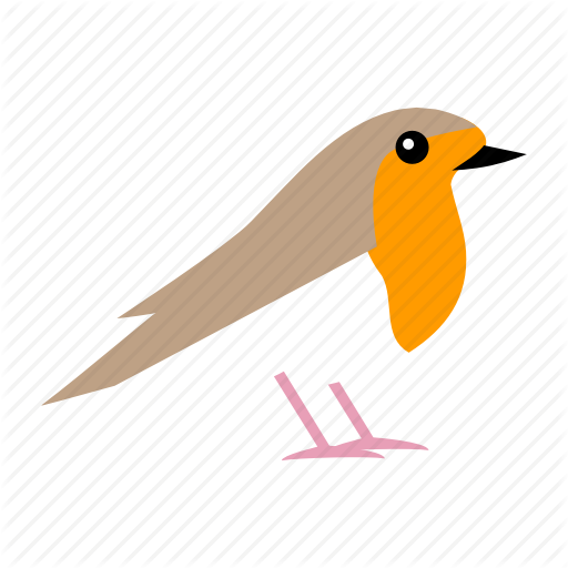 Bird, Christmas, Robn