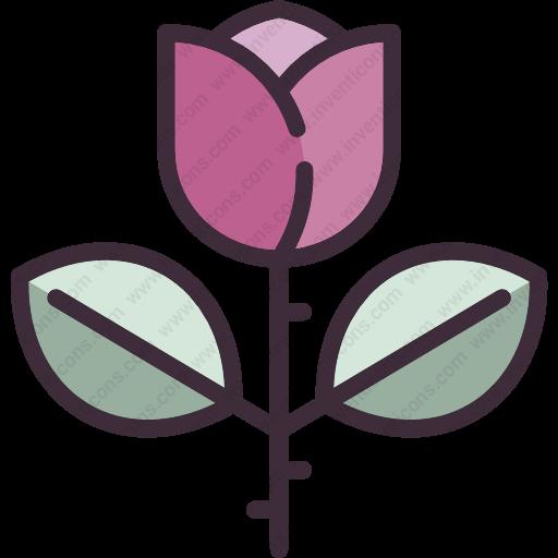 Download Rose,flower,garden,nature,botany,flowering,plants Icon
