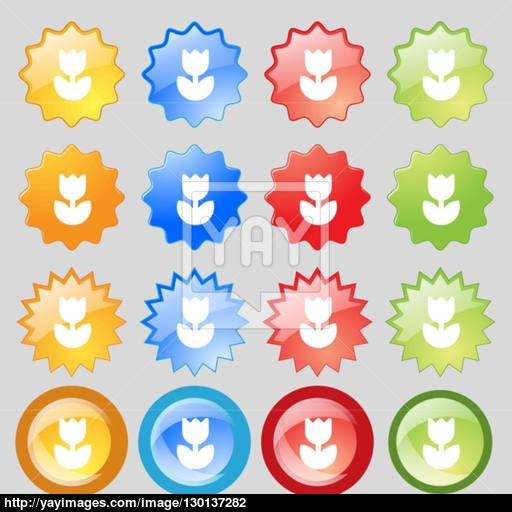 Flower, Rose Icon Sign Set From Sixteen Multi Colored Glass