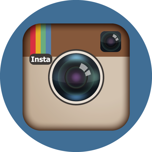 Instagram Icon Basic Round Social Iconset S Icons