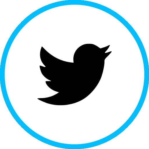Twitter Free Social Media Blue Round Outline Icon Design