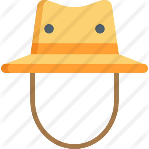 Coupon Code For Icon Hats Explorer