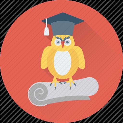 Degree, Graduate Owl, Graduation, Owl Degree, Owl Sage Icon