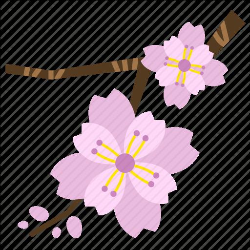 Bloom, Blossom, Cherry Blossom, Flower, Perennial, Pink, Sakura Icon