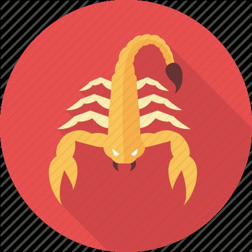 Astrology, Astrology Sign, Horoscope, Scorpio, Sign, Zodiac
