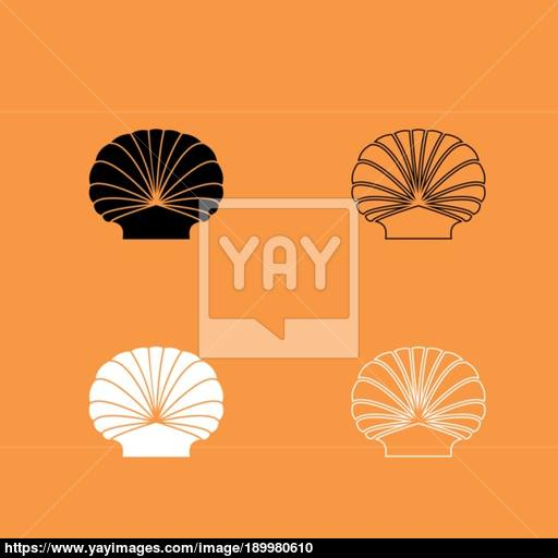 Shell Black And White Set Icon Vector