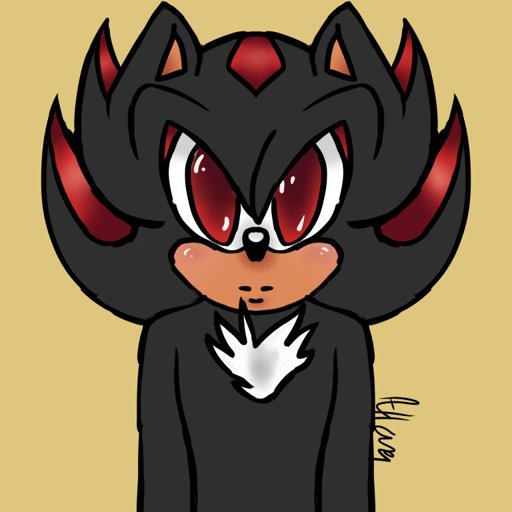Shadow And Silver Icons Sonic The Hedgehog! Amino