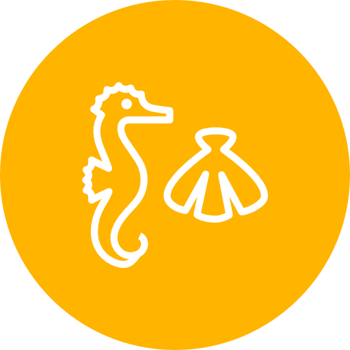Seahorse, Shell, Summer Icon Free Of Summer Line Icons Set
