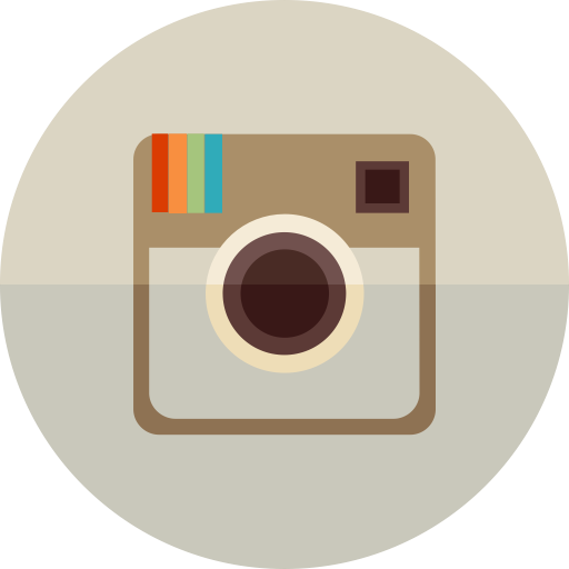 Social Media Instagram Silver Icon