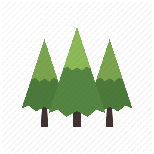 Canada, Conifer, Evergreen, Forest, Nature, Pine, Tree Icon