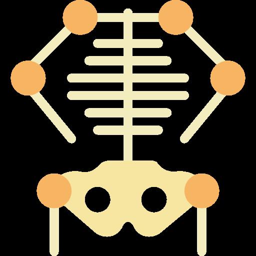 Body Parts, Medical, Skeleton Icon