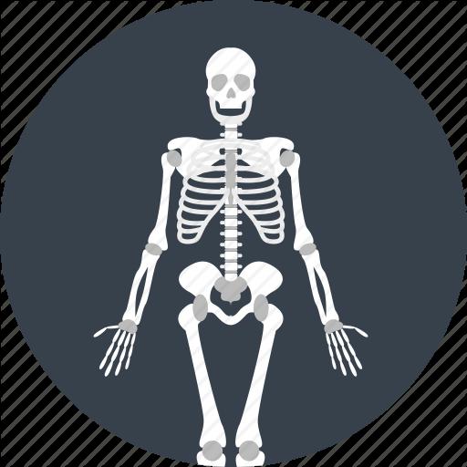 Bones, Dead, Skeleton Icon