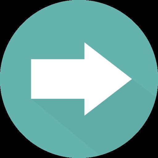 Arrows, Multimedia Option, Skip Icon