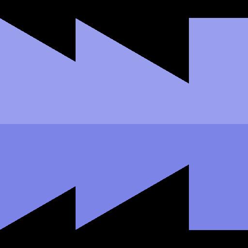 Multimedia, Video Player, Skip Icon