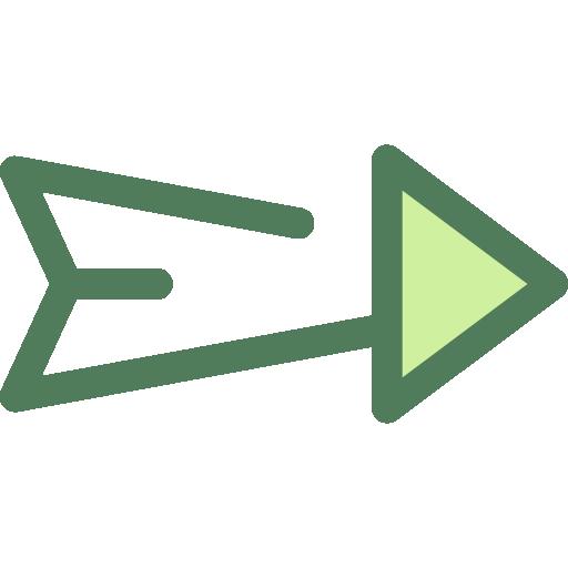 Skip Icon