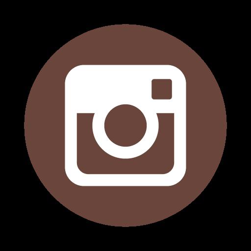 Vector Instagram Icon