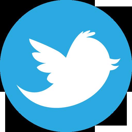 Twitter Icon Basic Round Social Iconset S Icons