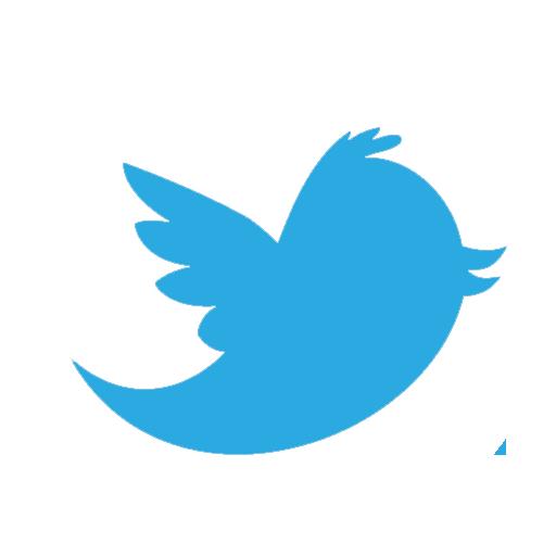 Twitter Round Social Icons Eximius