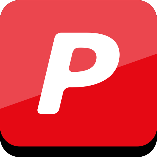 Connect, Media, Online, Pal, Pay, Social Icon Red Icons