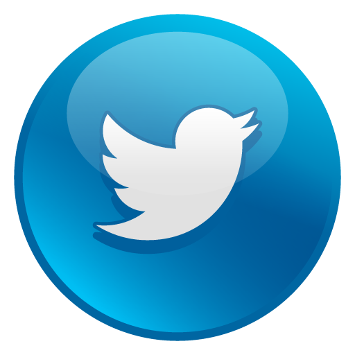 Twitter Icon Glossy Social Iconset Social Media Icons