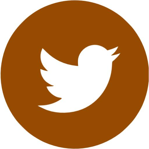 Brown Twitter Icon