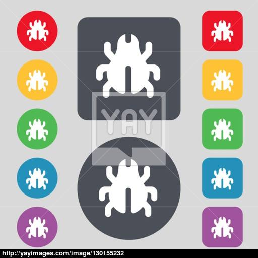 Software Bug, Virus, Disinfection, Beetle Icon Sign A Set