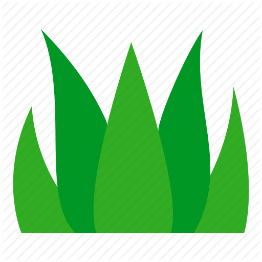 Grass, Grass Leaves, Ground, Leaves, Nature, Plant, Soil Icon