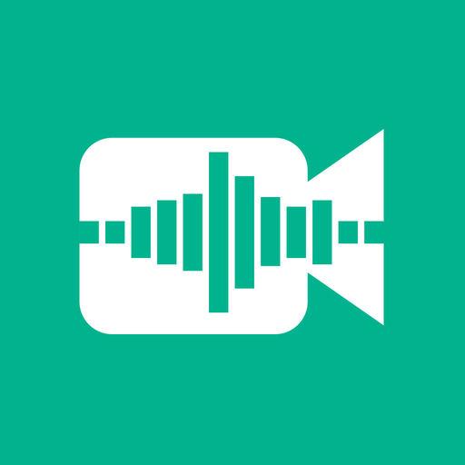 Video Voice Change R