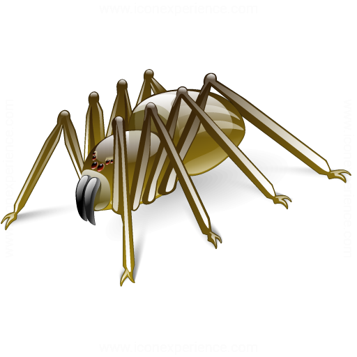 Iconexperience V Collection Spider Icon