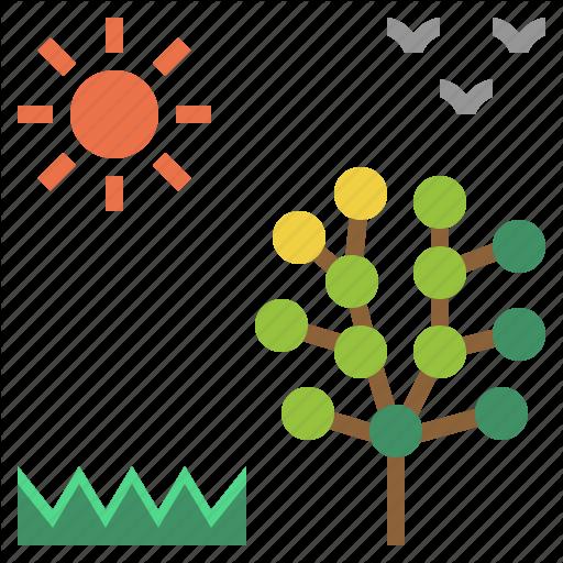 Blossom, Season, Spring, Springtime, Warm Icon