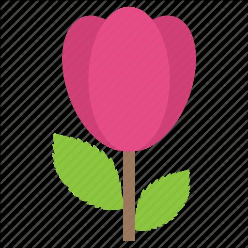 Flower, Lily Bud, Lotus, Nature Blooming, Spring Season Icon