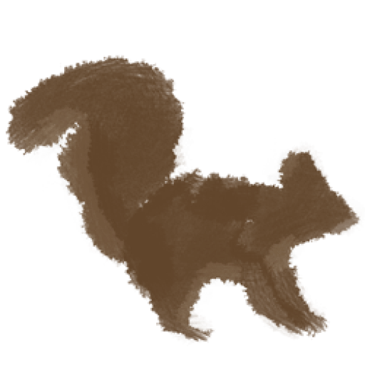 Cropped The Seo Squirrel Icon The Seo Squirrel
