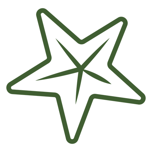 Simple Star Icon