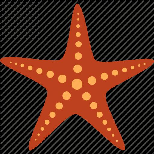 Echinoderm, Fish, Marine, Red, Sea, Star, Starfish Icon