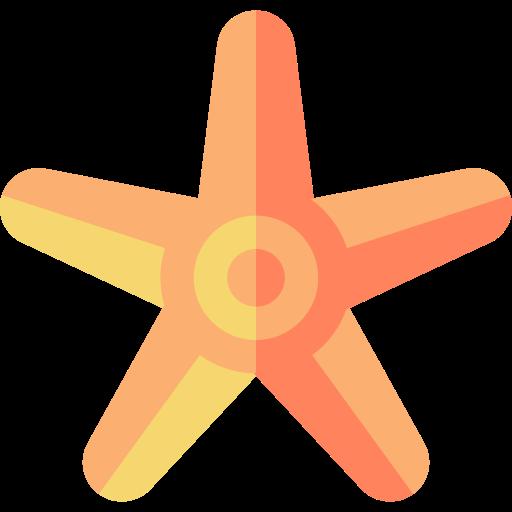 Starfish Png Icon