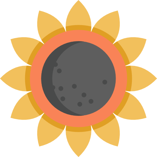 Sunflower Icon Thanksgiving Freepik