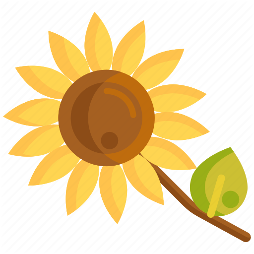 Floral, Flower, Sunflower Icon