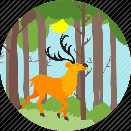 Animal, Autumn, Deer, Nature, Reindeer, Swamp Deer, Tree Icon