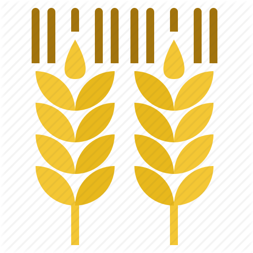 Beer, Brew, Taste, Wheat Icon